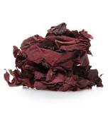 alga-bio-dulse